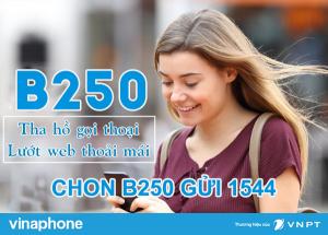 Cách đăng ký gói cước B250 Vinaphone