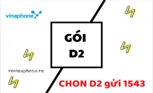 goi-d2-vinaphone