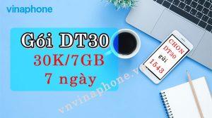 goi-dt30-vinaphone