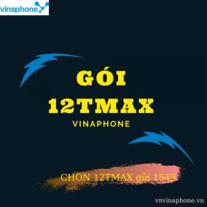 GOI-12TMAX-VINAPHONE