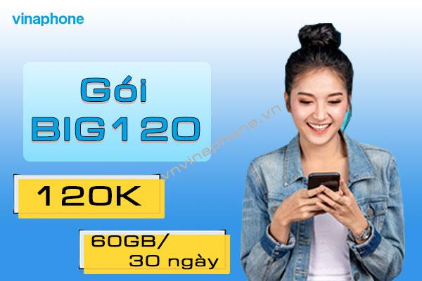 goi-big120-vinaphone