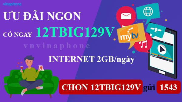 goi-12TBIG129V-vina