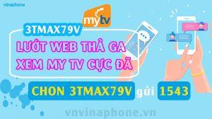 goi-3tmax79v-vinaphone