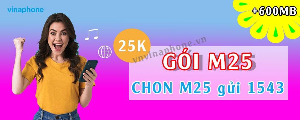 cach-dang-ky-goi-m25-vinaphone