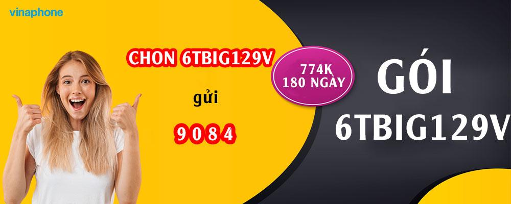 goi-6tbig129v-vina