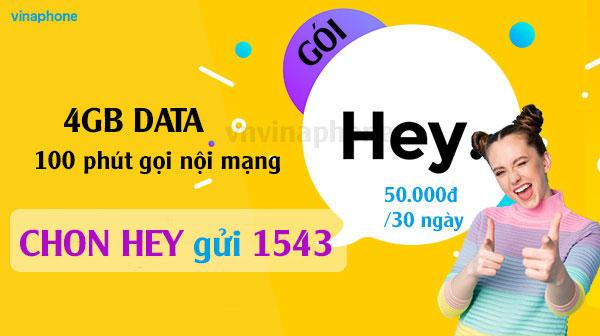 goi-HEY-Vina