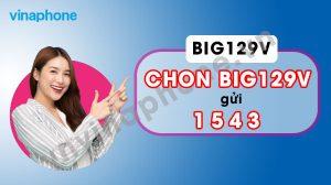 goi-big129v-vinaphone