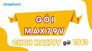 goi-max79v-vinaphone