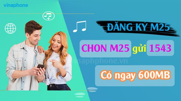 dang-ky-4g-vinaphone-goi-M25