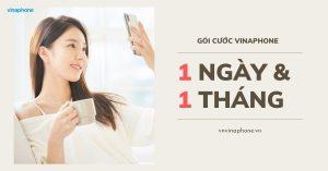 goi-cuoc-vinaphone-1-ngay-va-1-thang