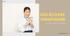 goi-eco169-vinaphone